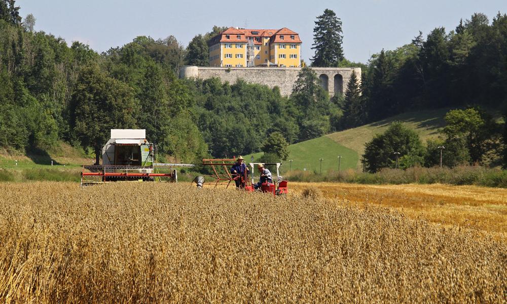 Neuer und alter Mähdrescher vor Schloss Grafeneck